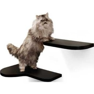 harmony cat shelves espresso
