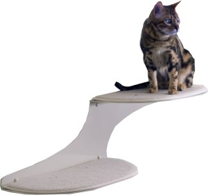 wall mounted cat shelve