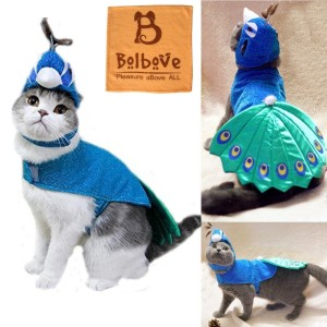 Peacock Costume for your Cat. Check it out: www.smrodcats.com/apparel/costumes-for-cats/#peacock