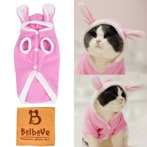 Check it out: www.smrodcats.com/apparel/costumes-for-cats/#rabbit