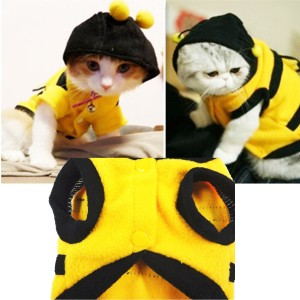 Check it out: www.smrodcats.com/apparel/costumes-for-cats/#bee
