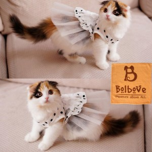 Dresses for Cats: Check it out: www.smrodcats.com/apparel/costumes-for-cats/#princess
