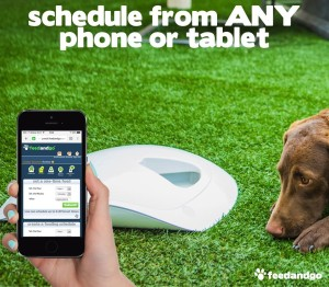 This automatic pet food dispenser you can control with your smartphone. Stay in control while you're away. Click for more information.