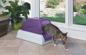 scoopfree automatic litter box 2