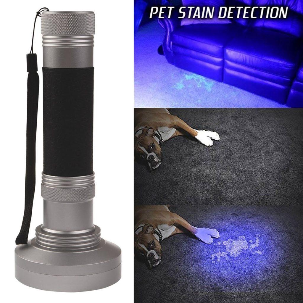 flashlight-for-lighting-up-cat-pee-urine