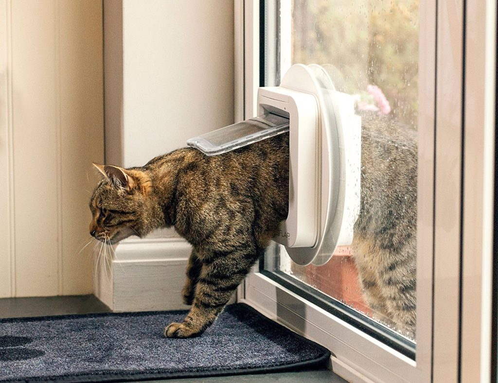 Sureflap Microchip Cat Door Review Smrod Cats