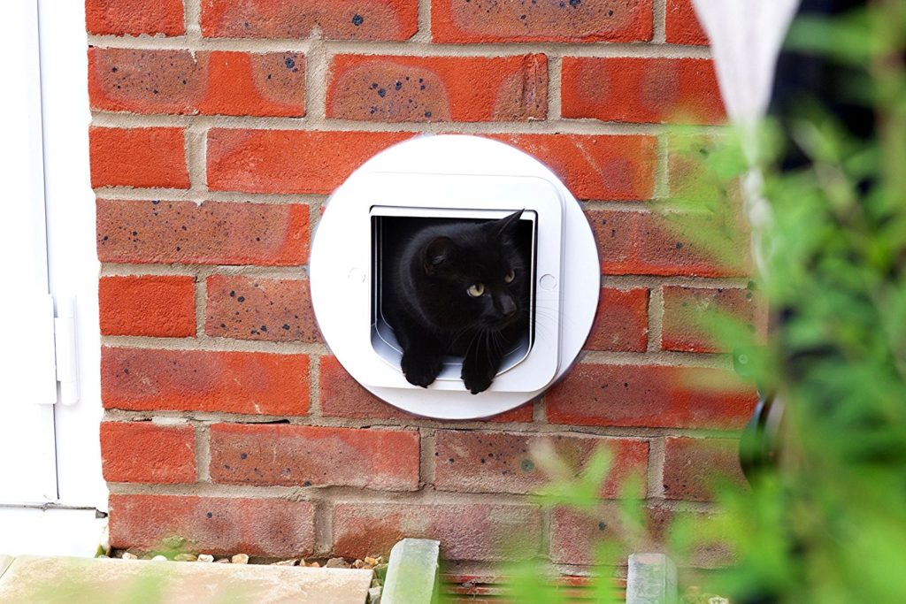 Cat Flap SureFlap Microchip Brick Wall Review