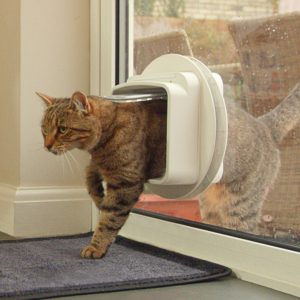 DualScan Sureflap Cat Flap User Experiences Reviews