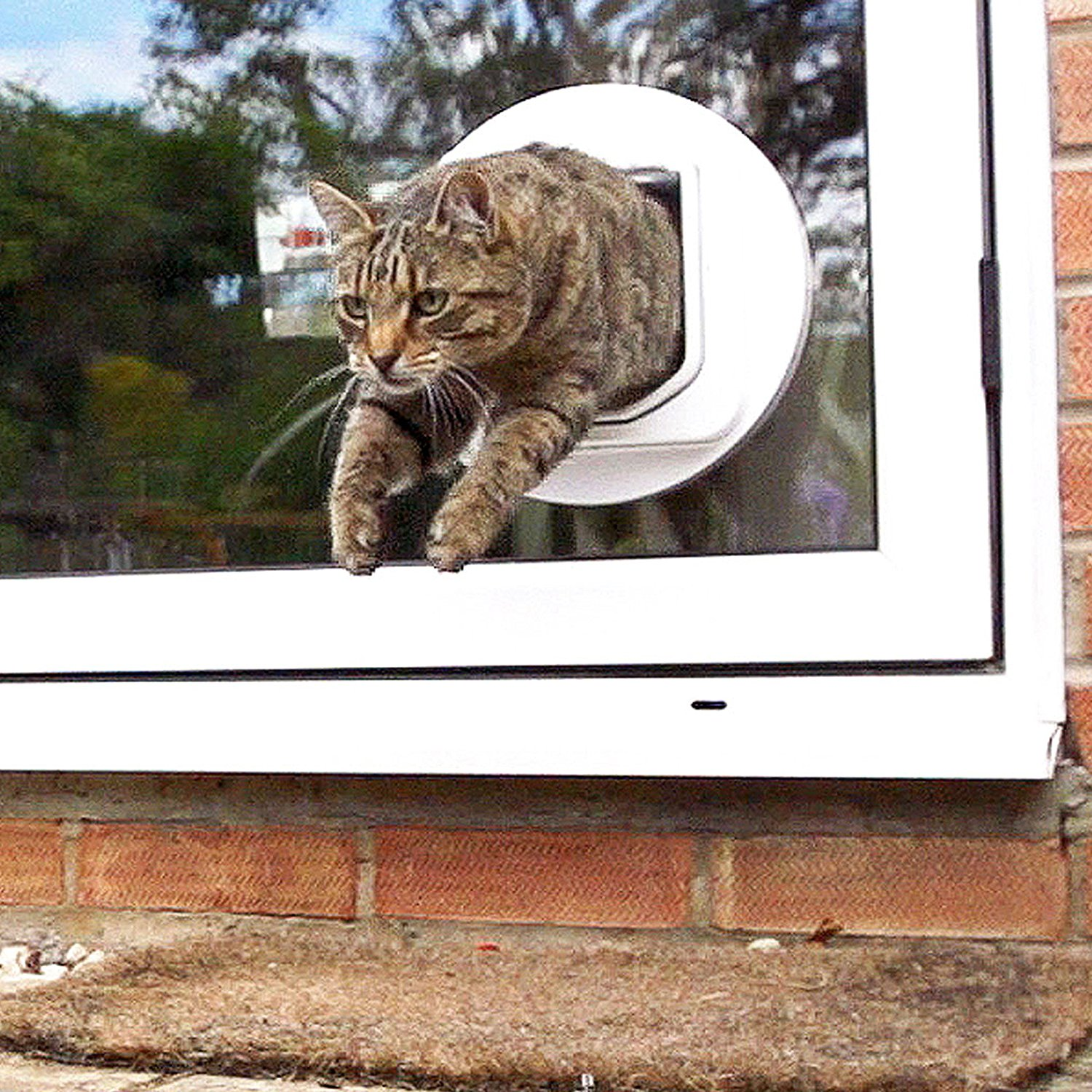 Delicieux Automatic Cat Doors Are Useful Gimmicks If You Want Your Cat To Become An  Indoor And/or Outdoor Pet. It Is Scientifically Proven That When Cats Have  The ...